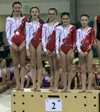 Gymnastique et aérobic : six podiums pour Yssingeaux par équipe