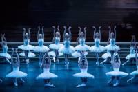 """""""Le Lac des cygnes"""" en direct de l'Opéra Bastille au cinéma de Sainte-Sigolène"""