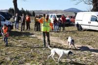 Saint-Julien-Chapteuil : un concours de chiens de meute ce week-end