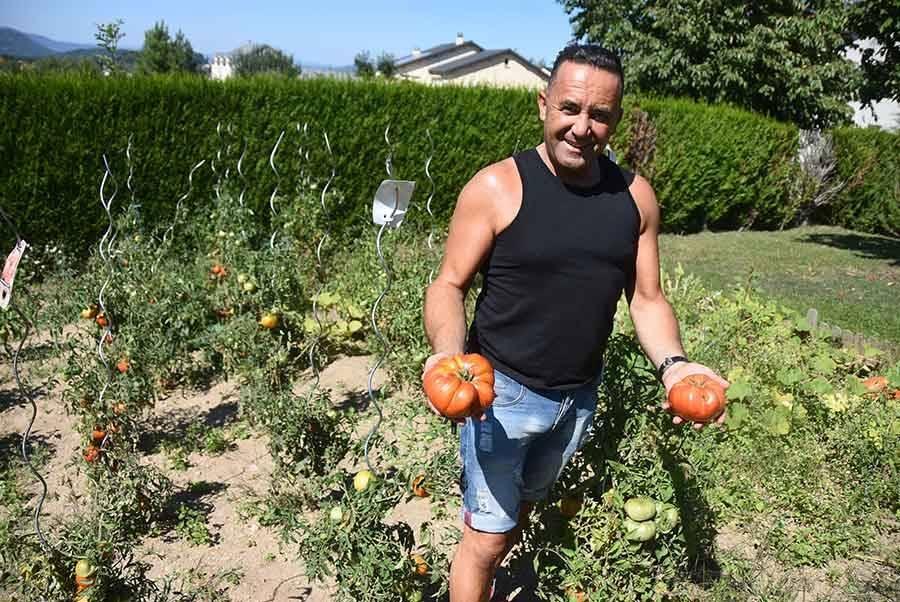 Yssingeaux : une tomate de plus de 800 grammes