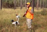 Permis de chasse à 200 euros : une fausse bonne nouvelle en Haute-Loire