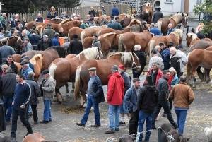 La Foire aux chevaux de Fay-sur-Lignon sera de retour le mercredi 20 octobre